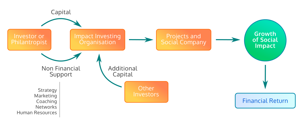 What is Impact Investing and How does it Works? | EIIC
