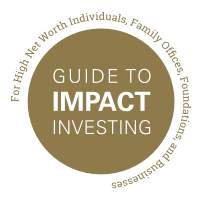 Guide to Impact Investing: Catalyzing Wealth for Change